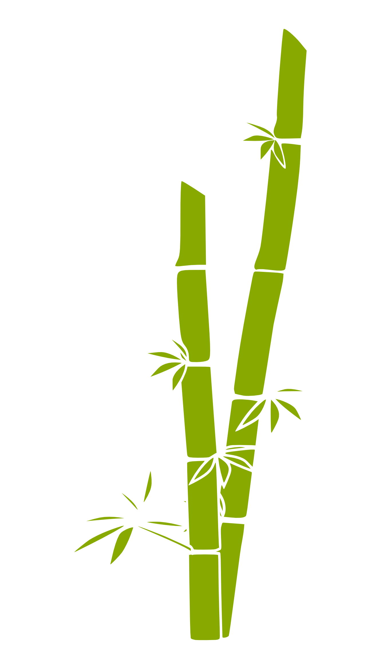 graphic free library Collection of free Bamboo drawing single