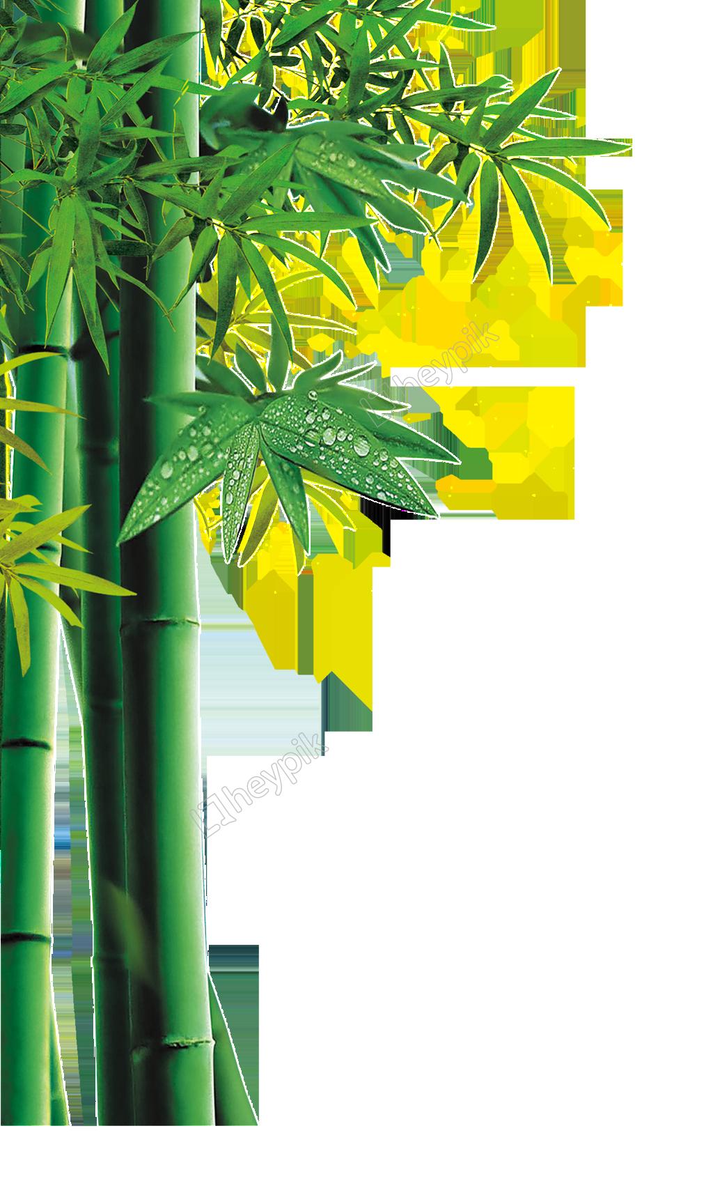 clip art download Green forest cartoon free. Bamboo transparent yellow