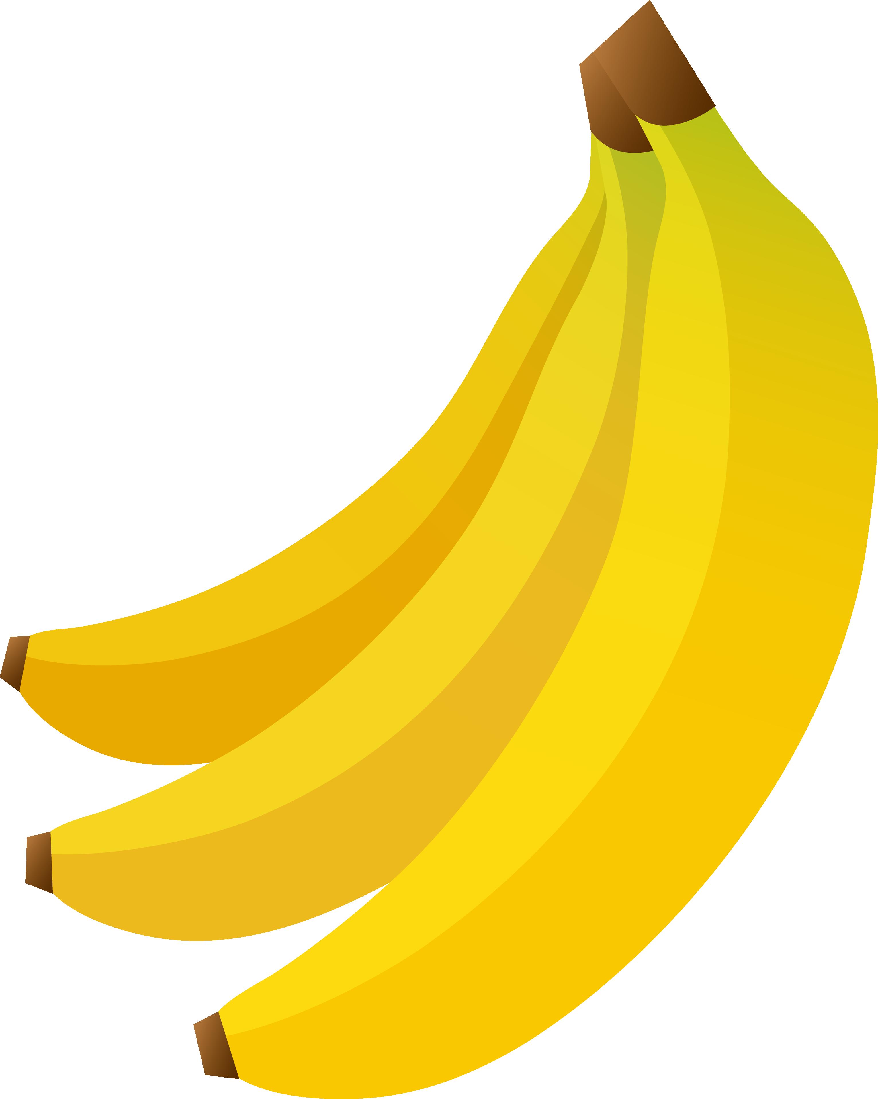 image library library Bananas vector. Banana png image free