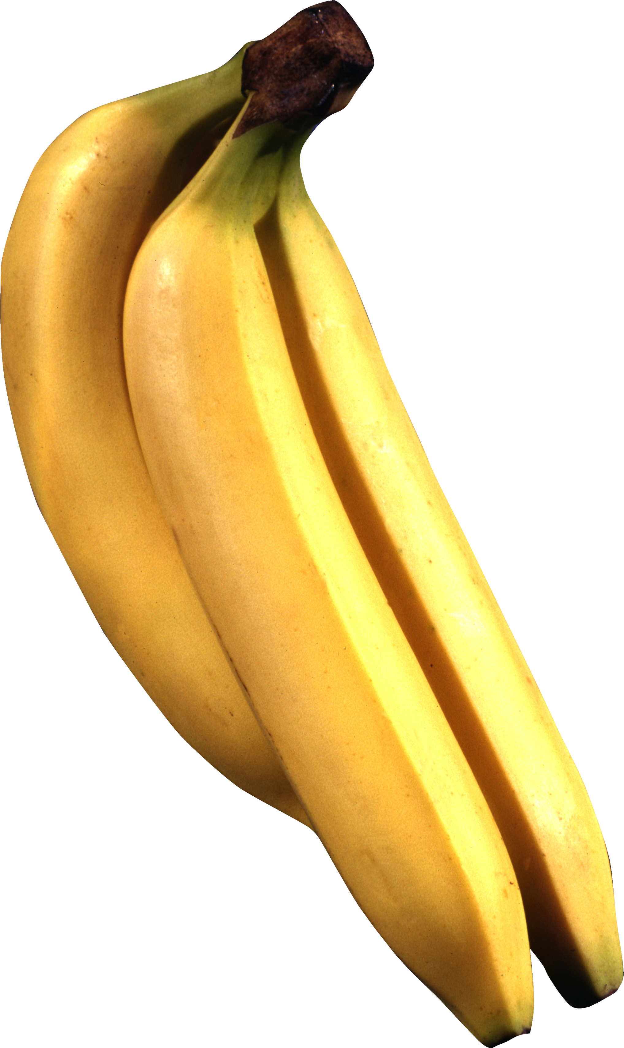 svg library stock Banana png image picture. Bananas vector banna