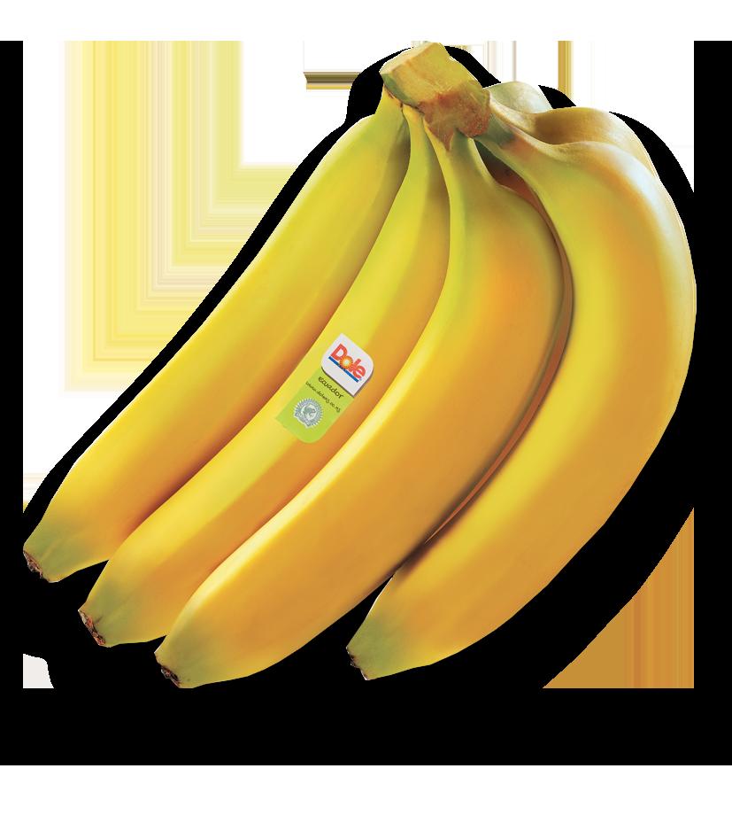 png free library Bananas vector cavendish. Dole nz premium