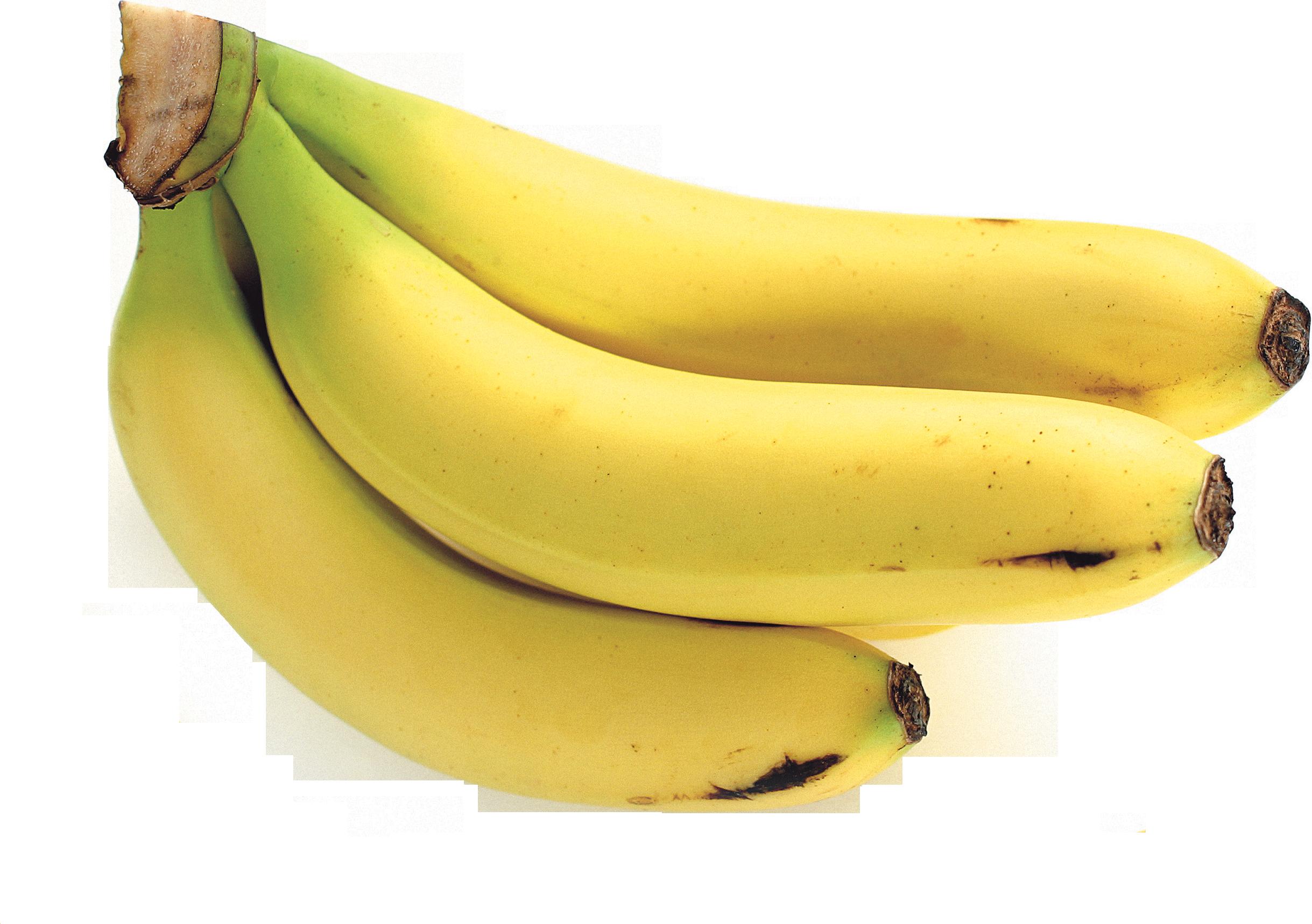 graphic transparent Bananas vector ripe. Png image purepng free