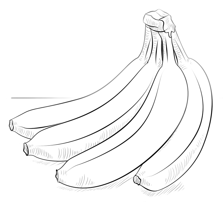 banner black and white stock Bananas drawing food. Banana coloring pages for