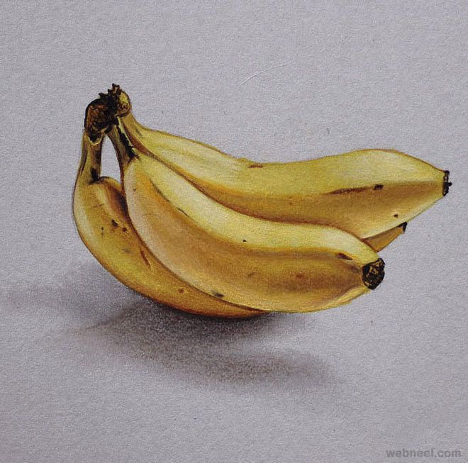 clipart library download Bananas drawing realistic.  banana by marcello