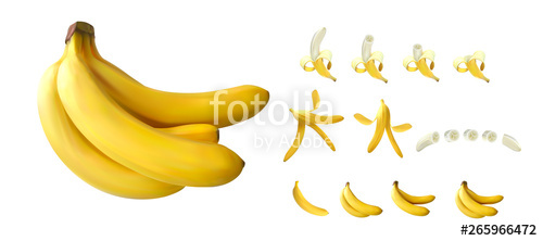 clip freeuse Bananas vector banana peel. Big realistic set d