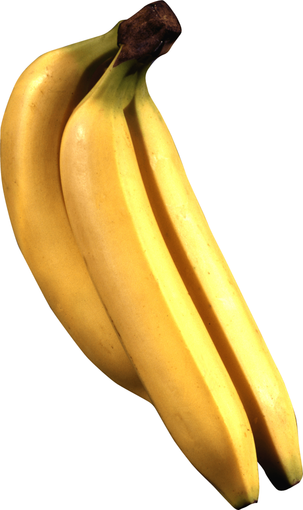 transparent library Bananas vector banana tree. Png image picture download