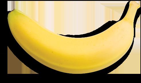 black and white download Australian blend. Bananas vector cavendish