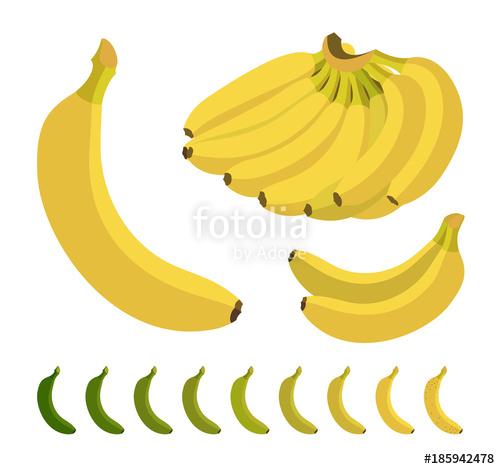 clip art black and white Set of illustration . Bananas vector flat design