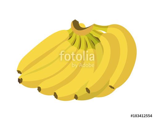 png library library Banana bunch illustration of. Bananas vector flat design