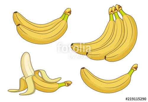 clip art free stock Cartoon fruits bunches of. Bananas vector rotten banana