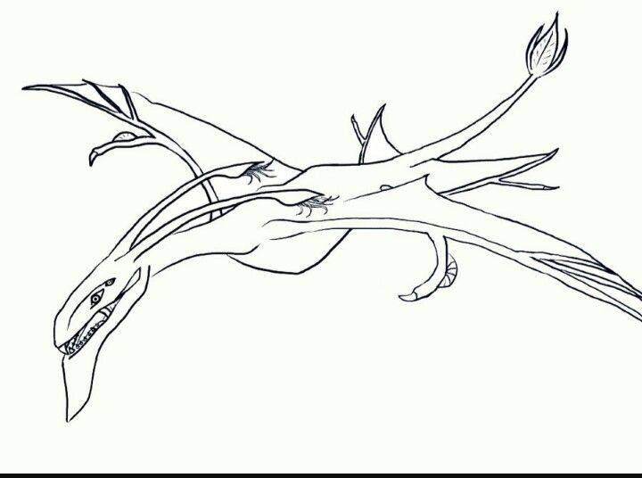 picture royalty free library Banshee drawing pandora. Avatar in drawings