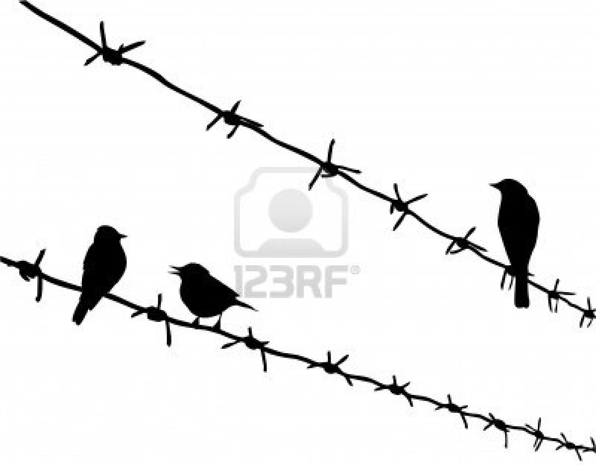 image freeuse download Barb wire clipart go ahead. Barbed images gallery for