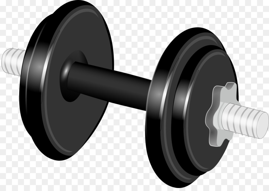 banner free stock Barbell clipart gym weight. Dumbbell training clip art.