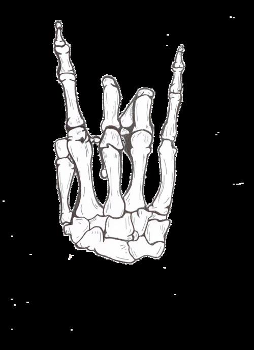 clipart skeleton hand