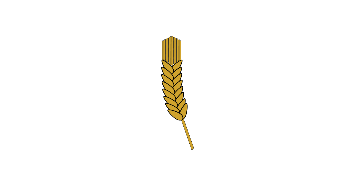 graphic transparent Barley Illustration Vector and PNG