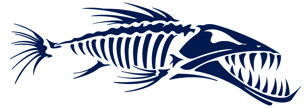 png freeuse download Sailfish vector barracuda fish. Skeleton free stock techflourish
