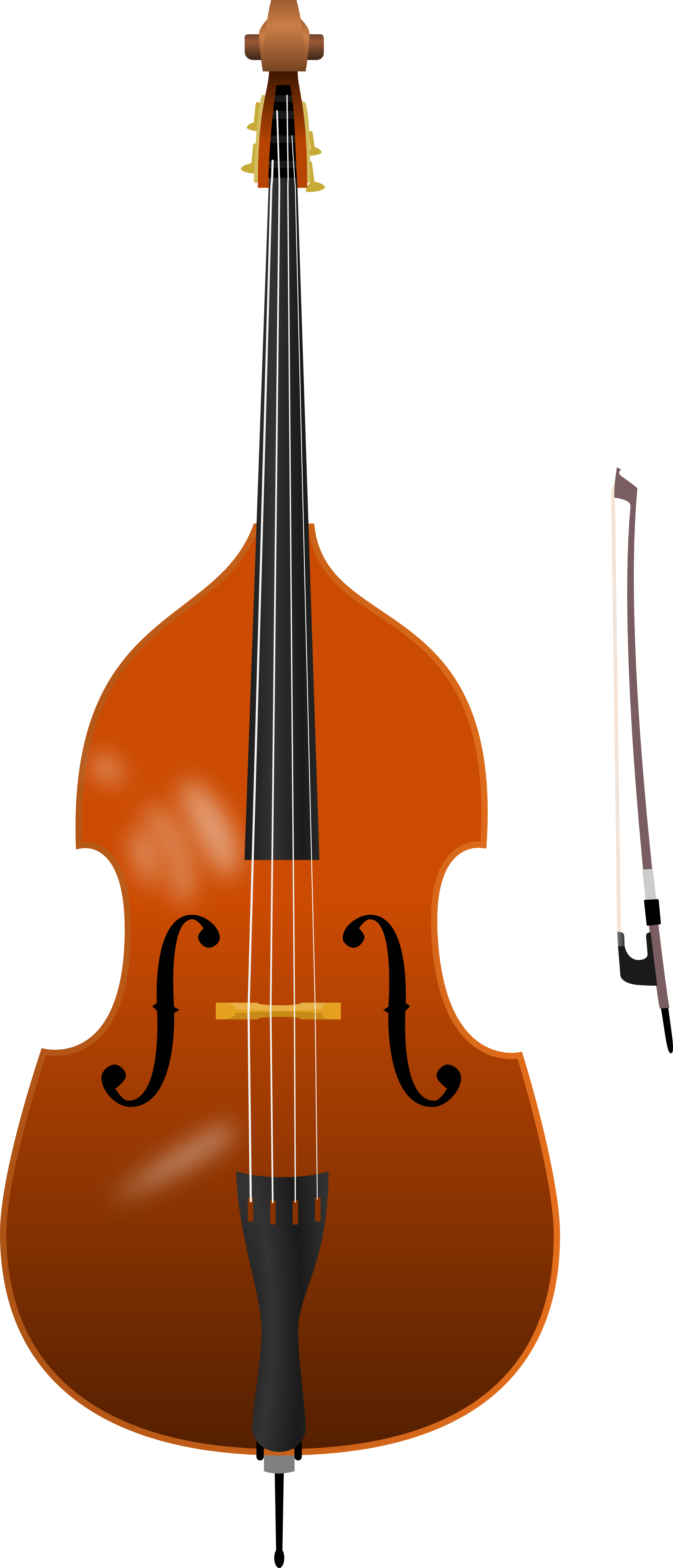 free library Double . Bass clipart.