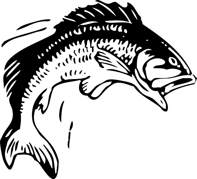 jpg library download Animals head red water. Bass clipart sketches.
