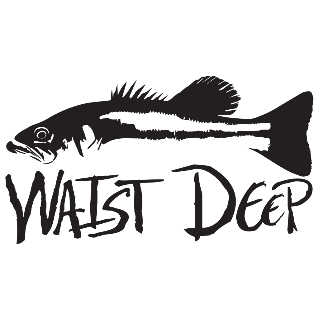 picture royalty free Bass clipart snook. Decal waist deep.