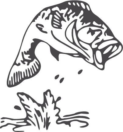 image black and white Largemouth fish outline diy. Bass clipart snook.