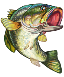 svg black and white Catfish clipart janitor fish. Image result for largemouth.