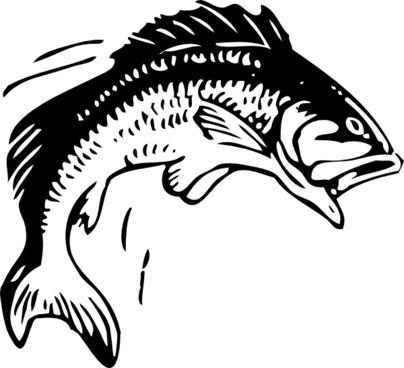 jpg transparent stock Vector fish free download. Bass svg clip art