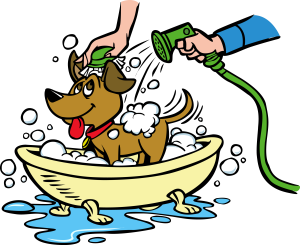 clip art Bathing clipart dog bath. How often should you.