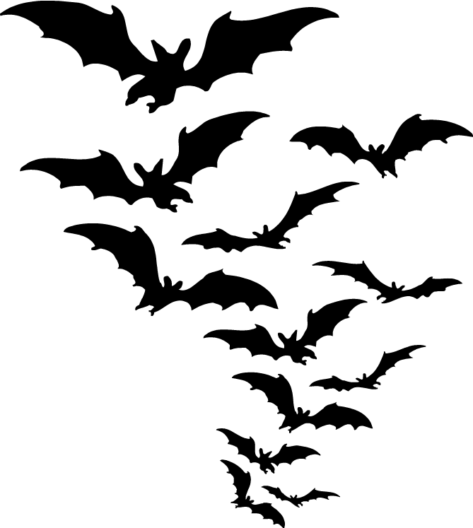 image transparent library Bats clipart. Group of transparent png.