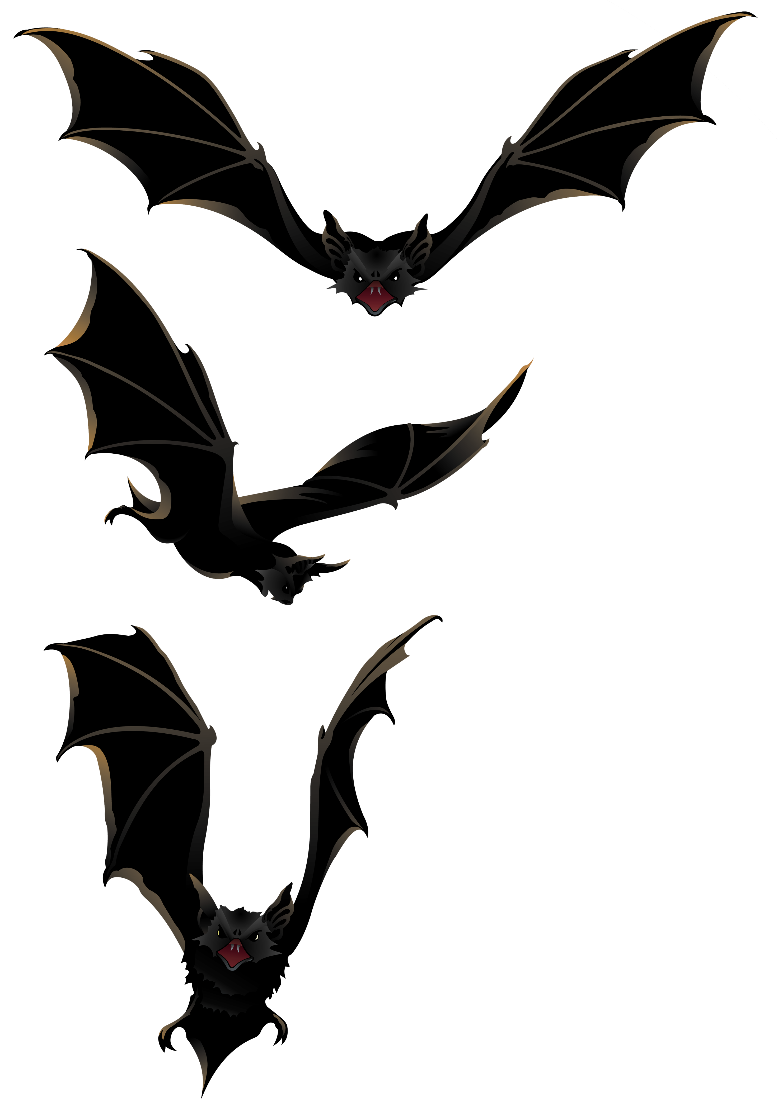 image library stock Bats clipart. Halloween png gallery yopriceville.