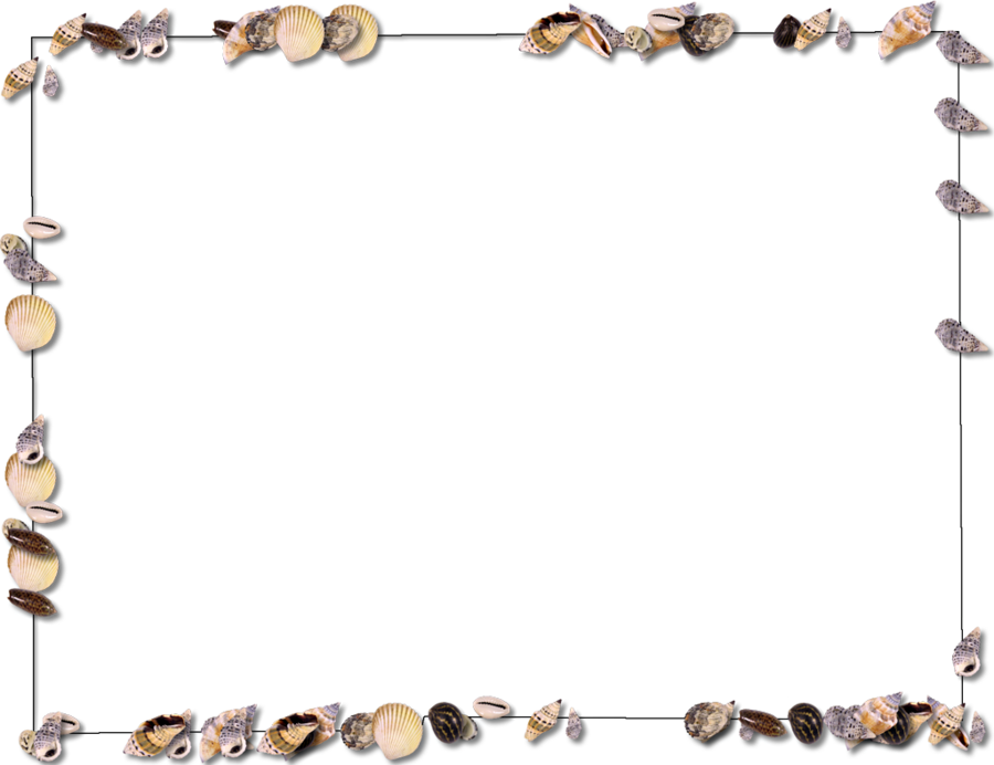 graphic library download Word clipart seashell . Beach transparent border