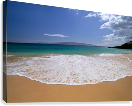 clip free stock  png background for. Beach transparent shore