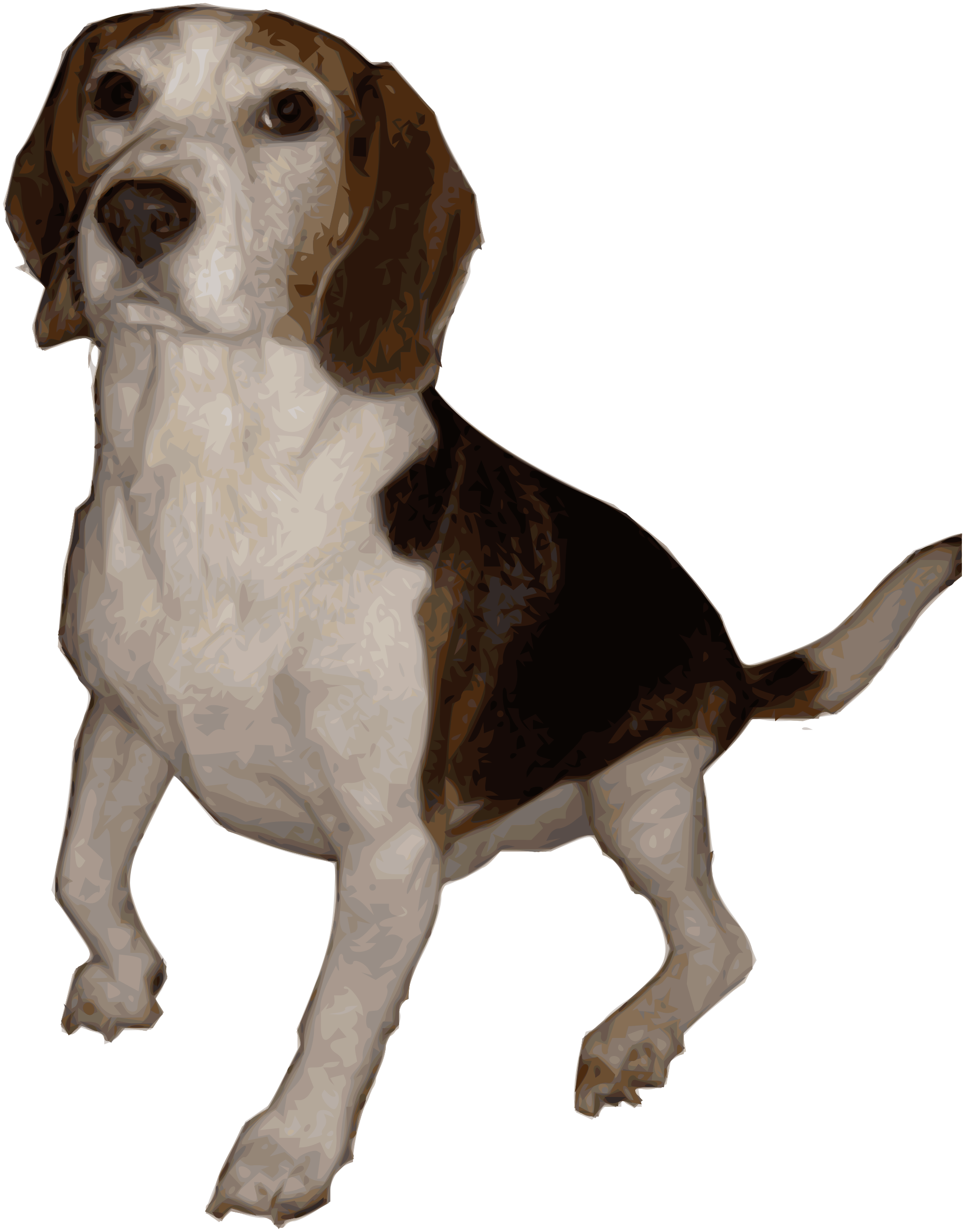clipart freeuse download Medium version big image. Beagle clipart
