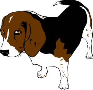 png black and white library Copper The Beagle Clip Art at Clker