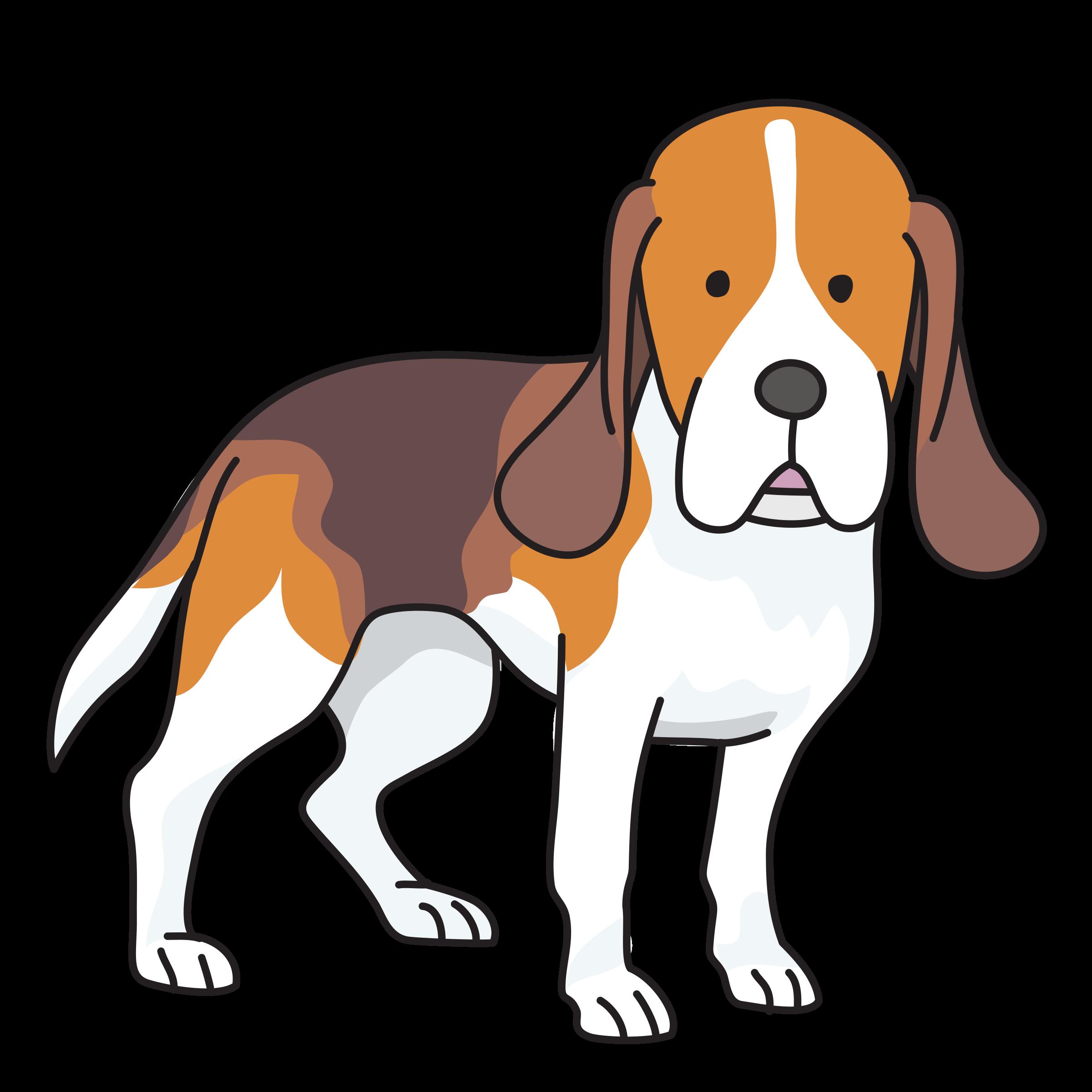 svg transparent Beagle clipart. Dog big image png.