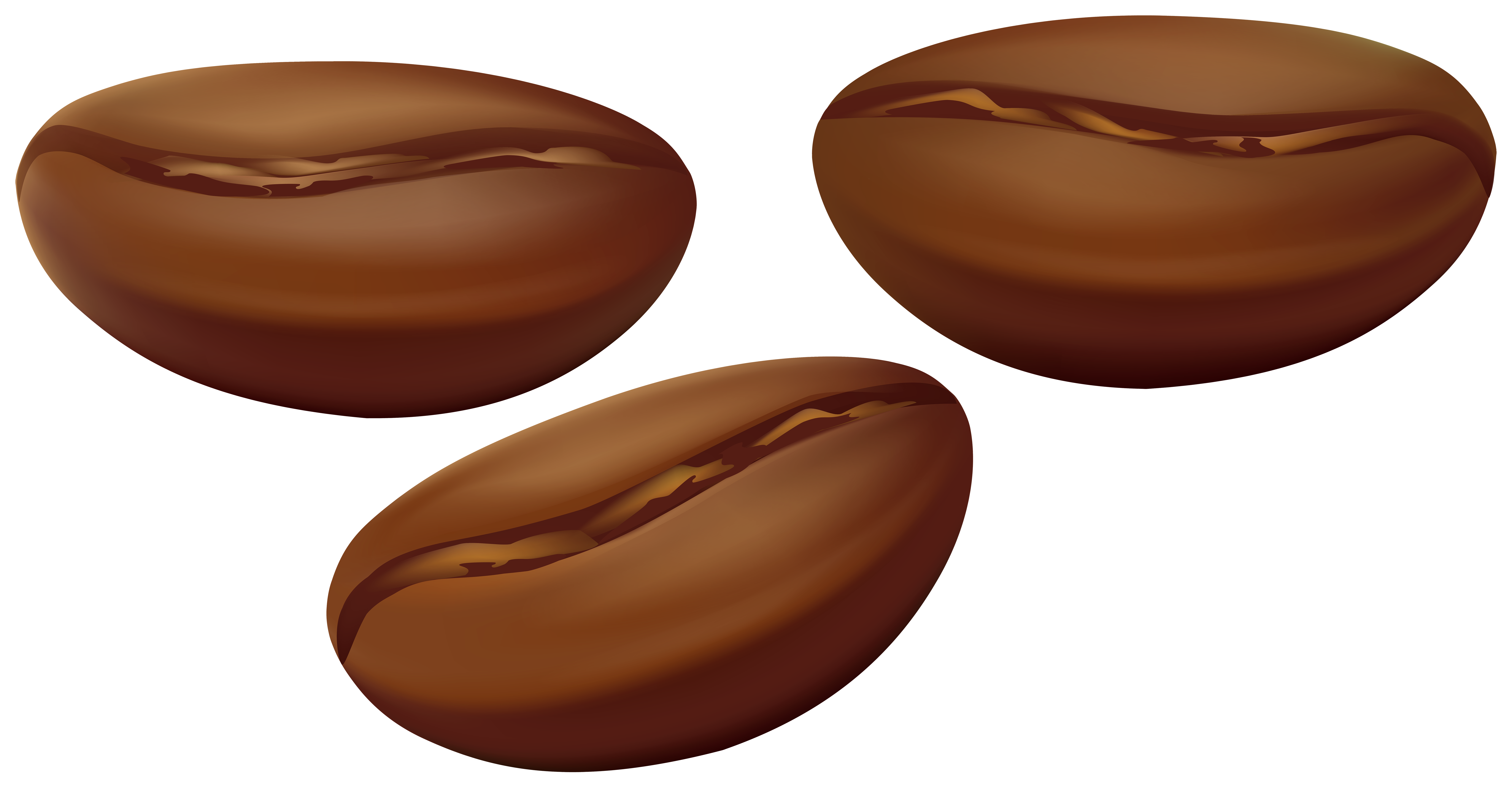 png download Coffee beans transparent png. Bean clipart.