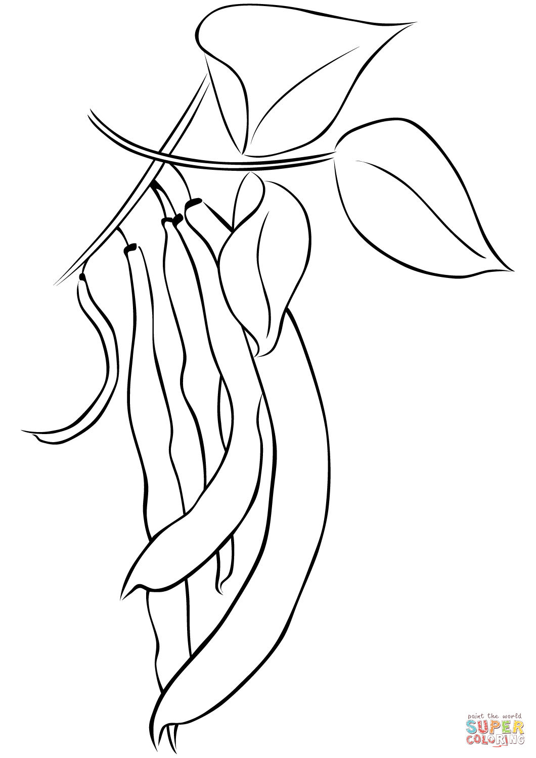 jpg royalty free download Bean drawing coloring page. Beans free printable pages
