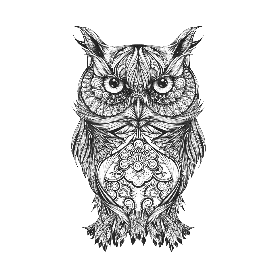 graphic black and white stock Owl tattoo art sketch. Bean drawing full body