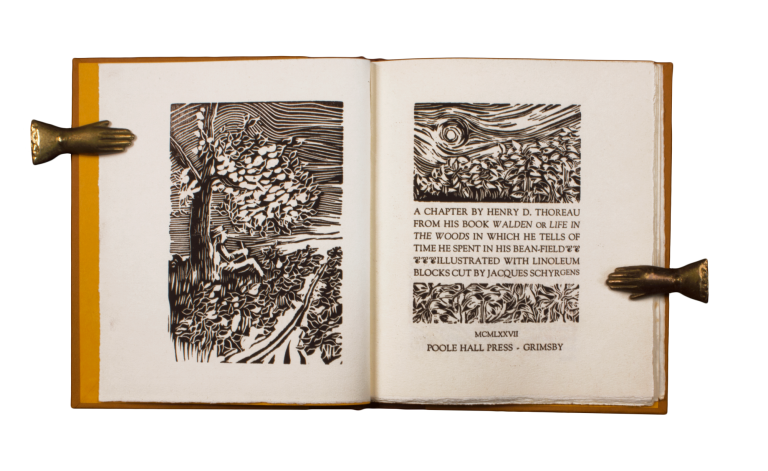 image black and white Bean drawing notebook. The field a chapter