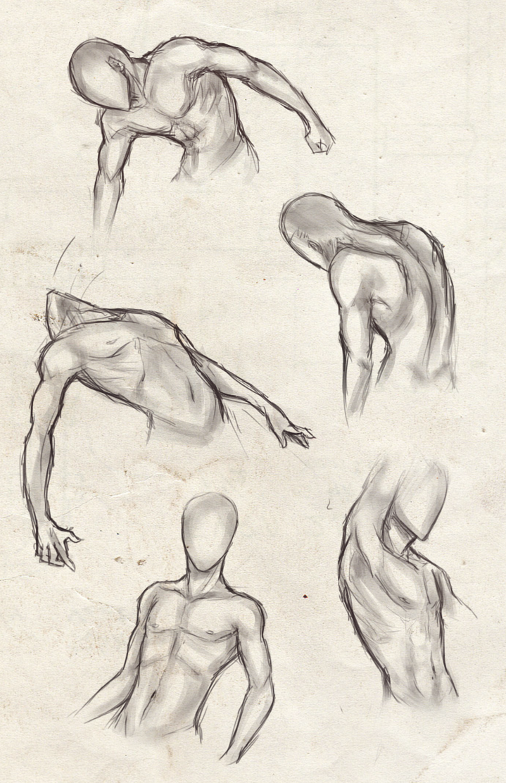 png stock Bean drawing torso. Collection of free torsos