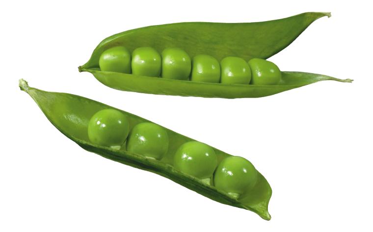 picture stock Split silique common bean. Beans clipart snow pea.