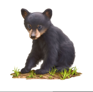 jpg library stock Black free images at. Bear cub clipart