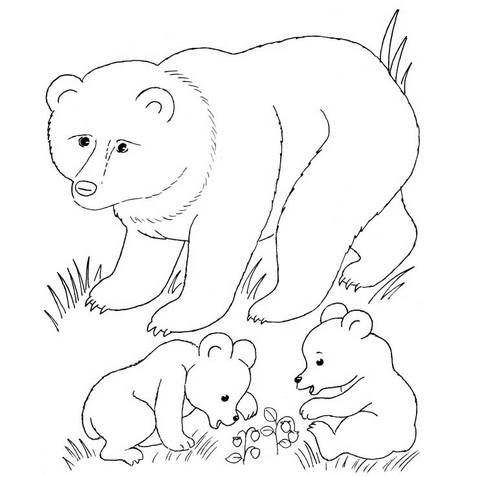 transparent library Mother cubs coloring page. Bear cub clipart black and white