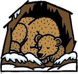 transparent library Free hibernation cliparts download. Bear hibernating clipart