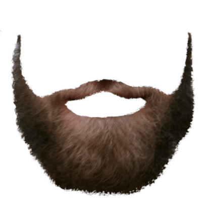 royalty free library Light Brown Beard transparent PNG
