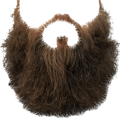 svg library stock Beard Two