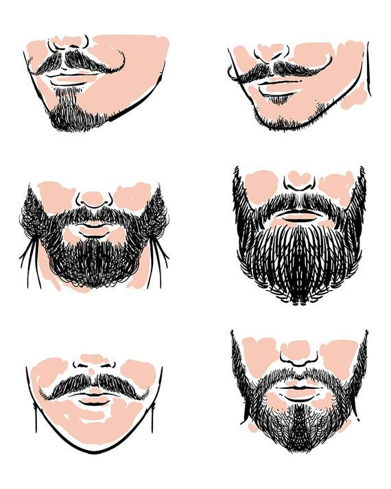 clip art transparent download Vector set of hipster. Beard clipart hand drawn