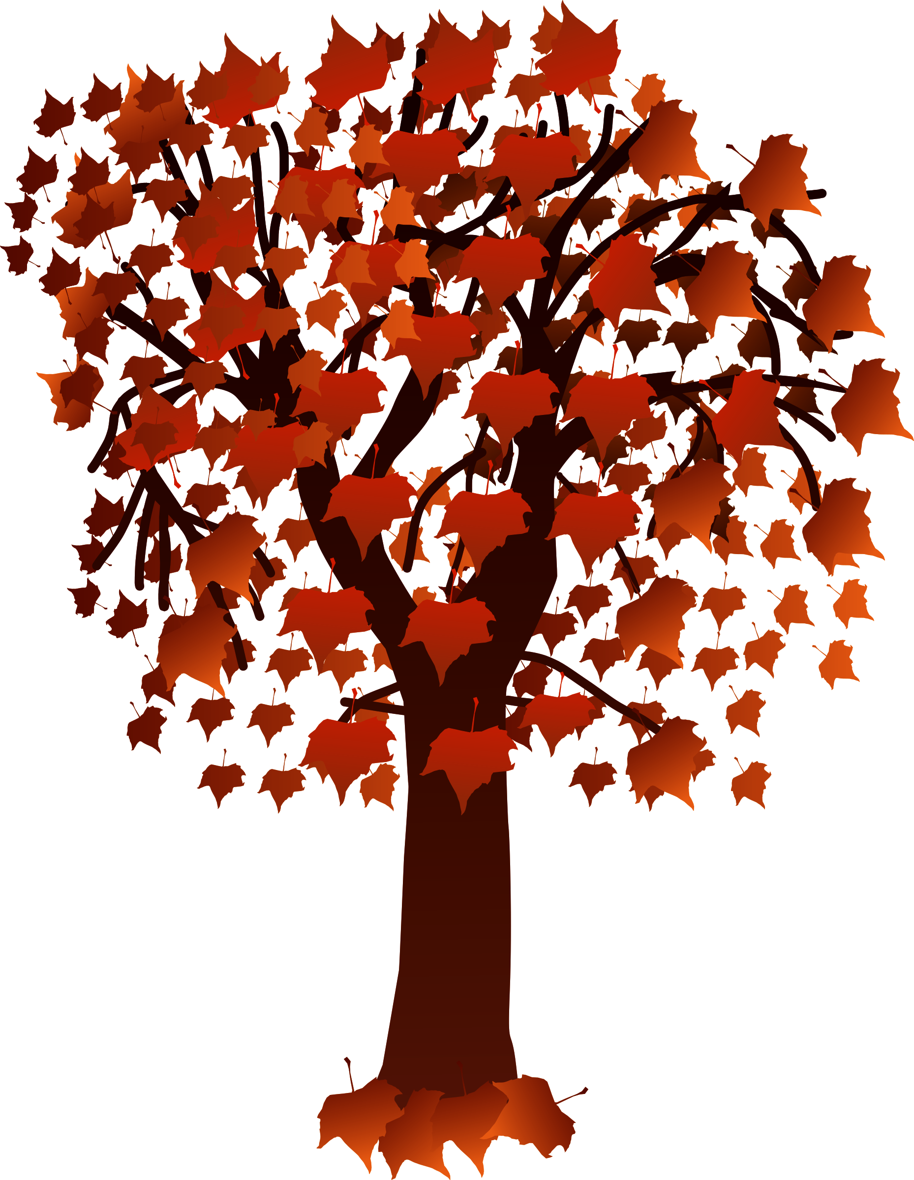 graphic library Maple tree with leaves. Beard clipart isolated