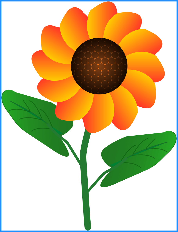 png free download Beard clipart orange. Unbelievable flower by tadmac