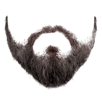 clip free stock Download free png photo. Beard clipart original
