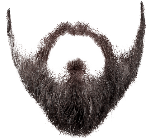 clip art transparent library HQ Beard PNG Transparent Beard